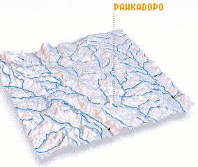 3d view of Pawkadopo