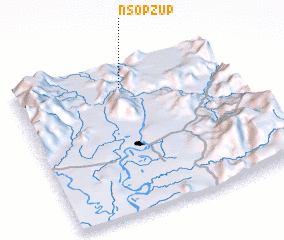3d view of Nsopzup