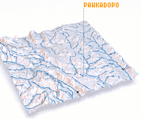 3d view of Pawkadopo