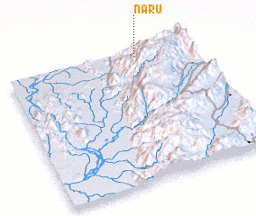 3d view of Naru