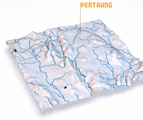 3d view of Pentawng