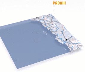 3d view of Padaik