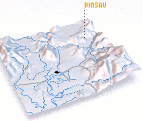 3d view of Pinsau