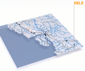 3d view of Kale