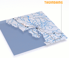 3d view of Tagundaing