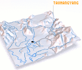 3d view of Taumangyang