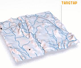 3d view of Tangtap