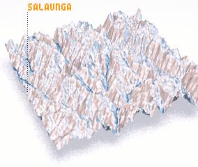 3d view of Salaunga