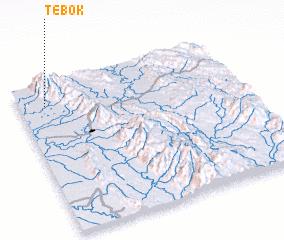 3d view of Tebok