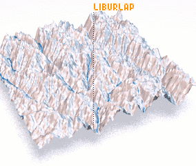 3d view of Liburlap