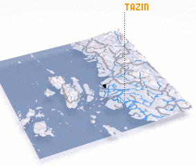 3d view of Tazin