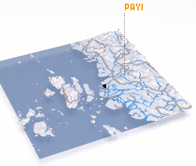 3d view of Payi