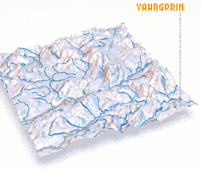 3d view of Yawngprim
