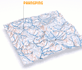 3d view of Pawngping